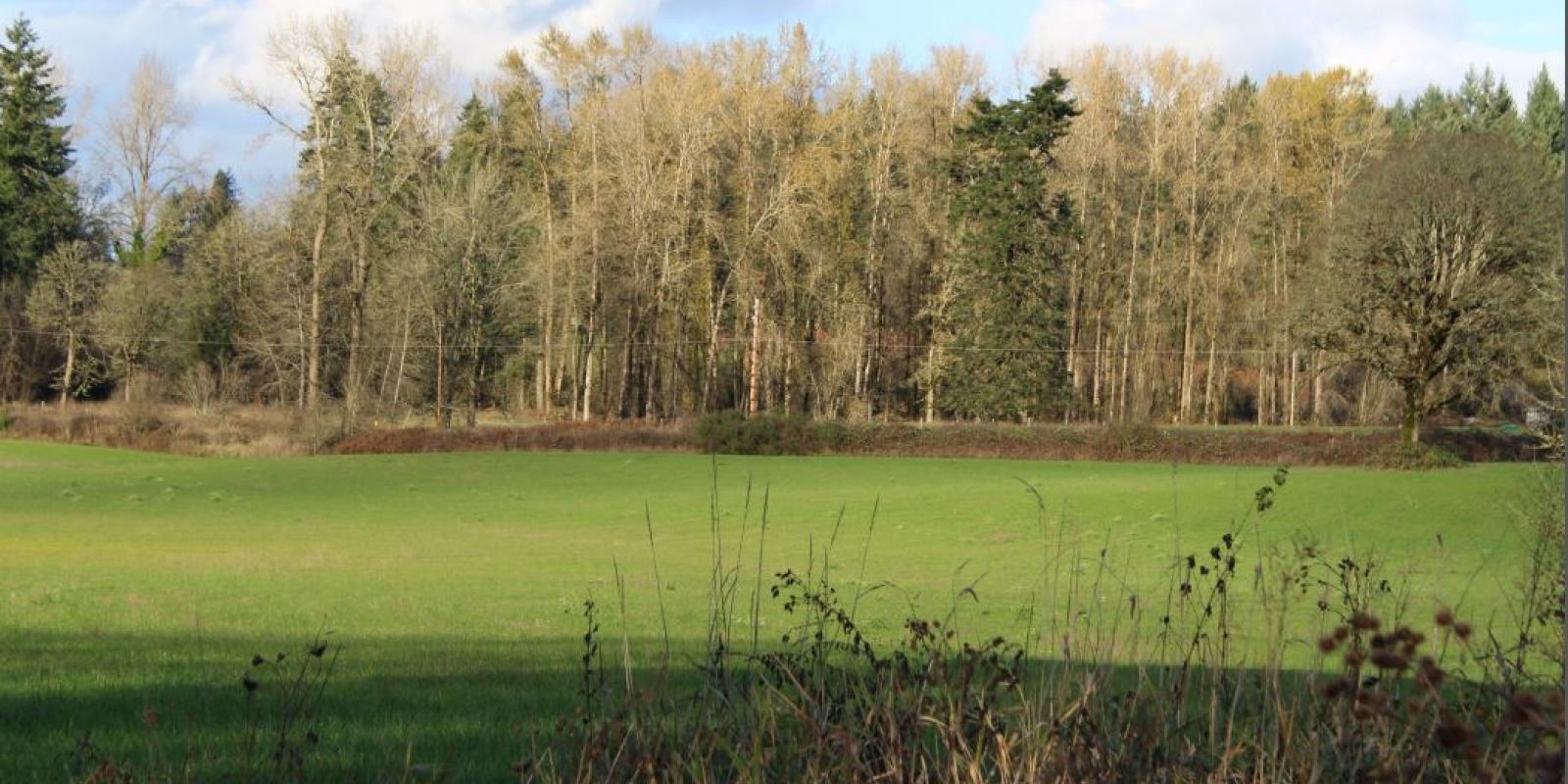 NE Lockwood Rd, LaCenter, WA, ,Land,Sold/Leased,NE Lockwood Rd, LaCenter, WA ,1157