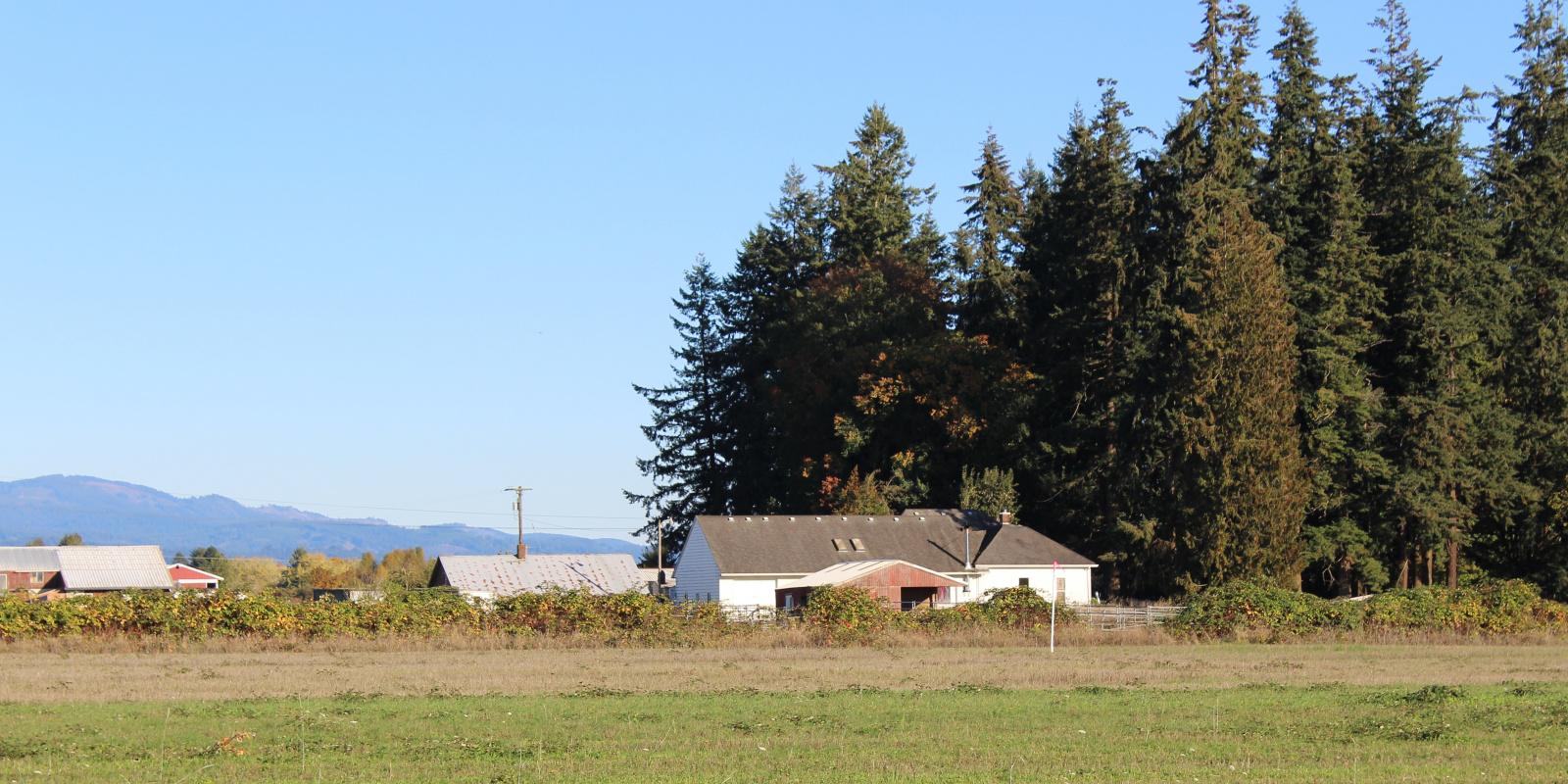 17026 NE 92nd Ave, Battleground, WA, ,Land,Sold/Leased,Valley Ranch Estates - Tract 2,17026 NE 92nd Ave, Battleground, WA,1075